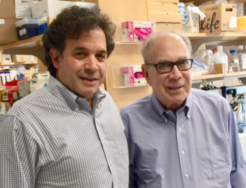 ALZGerm Quest Team Visits Cure Alzheimer's Fund and Dr. Tanzi's Harvard laboratory